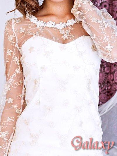 画像1: 豪華パール&ビジュー*金糸刺繍*シースルースリーブミニワンピース*S/M/L/XL